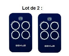 lot de 2 télécommandes echo tx4 rc433-6100334